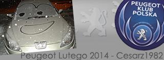 Peugeot miesiąca - Luty 2014