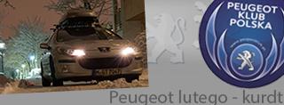 Peugeot miesiąca - Luty 2015